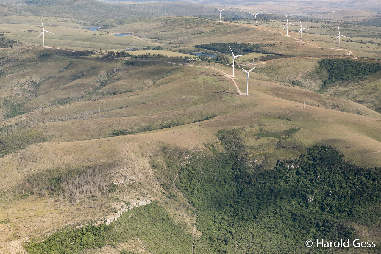 Waainek Wind Farm near Grahamstown, Eastern Cape